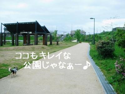 2008050605.jpg