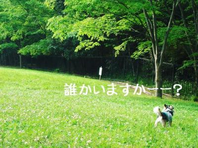 2008052207.jpg
