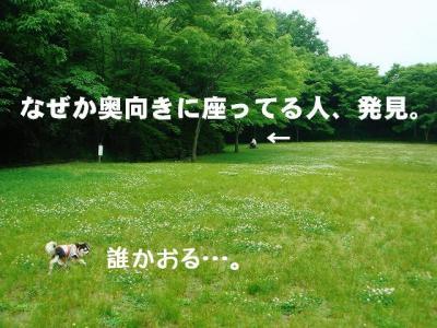 2008052404.jpg