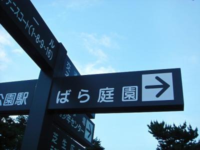 2008060202.jpg