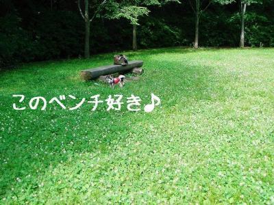 2008060502.jpg