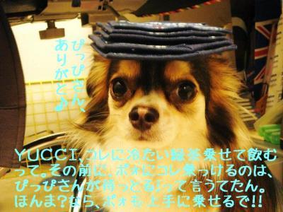 2008062707.jpg