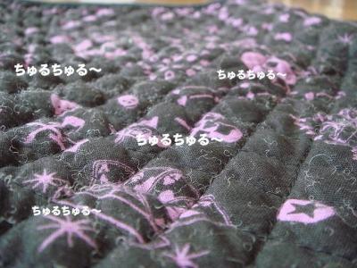2008080103.jpg