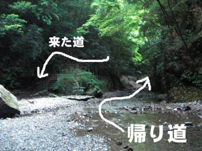 2008081609.jpg