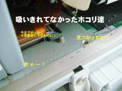2008090405.jpg
