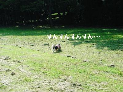 2008100306.jpg