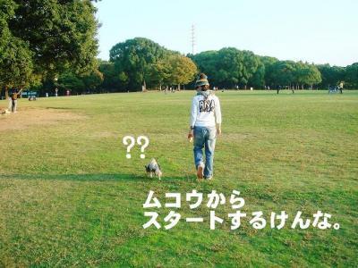 2008102102.jpg
