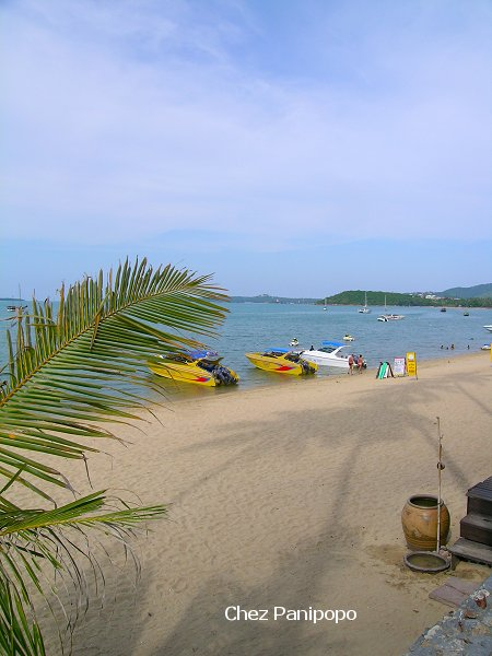 samui4
