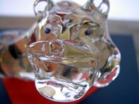 ガラスの虎