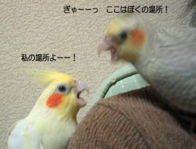 05_10-30_03.jpg