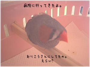 05_9-27_01.jpg