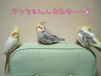 06-05-006_03.jpg