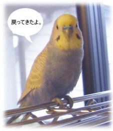 2006-04-0010_01.jpg