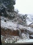 20080123   初雪 1