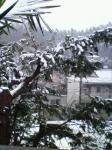 20080123 初雪 2