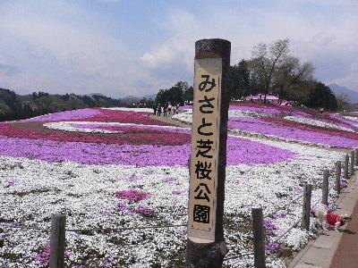 みさと芝桜公園。