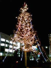 地元駅前のツリー