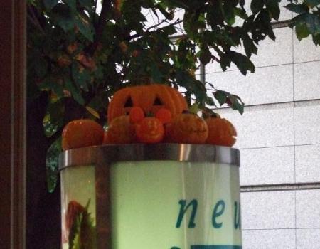 2008年10月29日 175