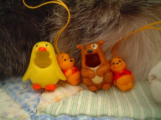 chickn_pup2.jpg