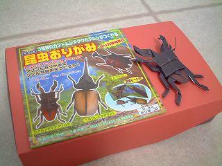 konchu_origami.jpg