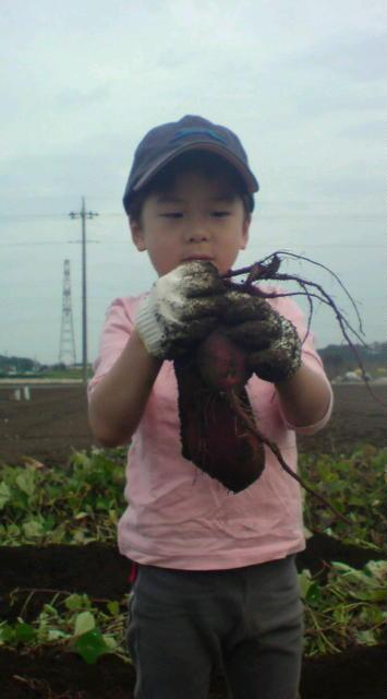 収穫だ~い!!