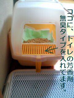 ナッツのトイレ