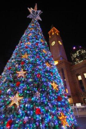 2009 クリスマスツリー