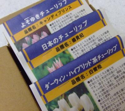2008_092379300002.jpg