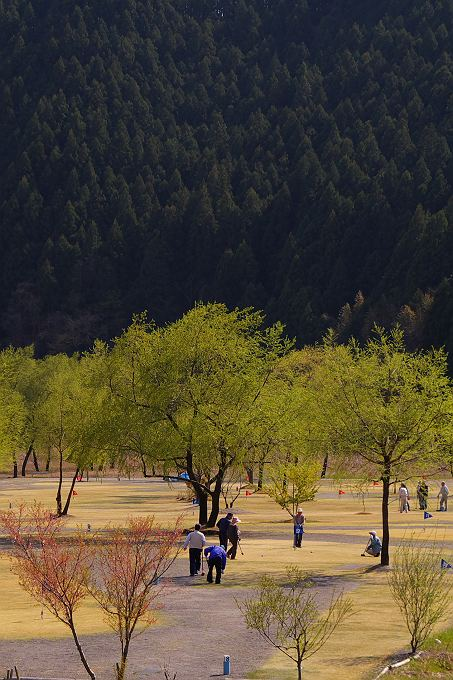 川根で見掛けた春の風景