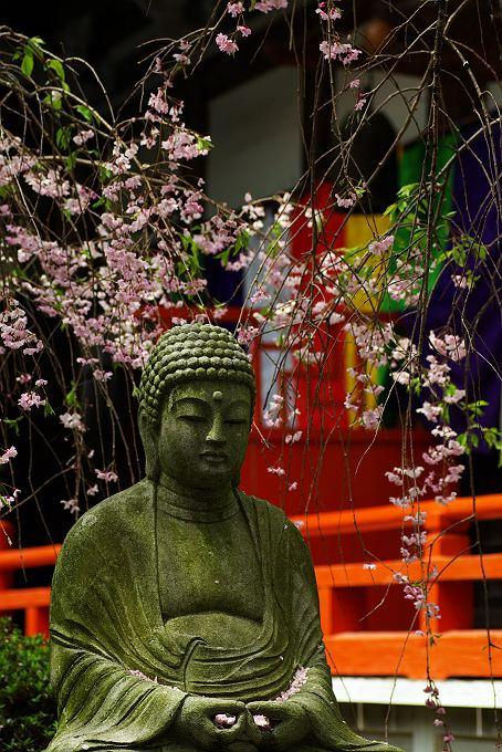 不動寺の春