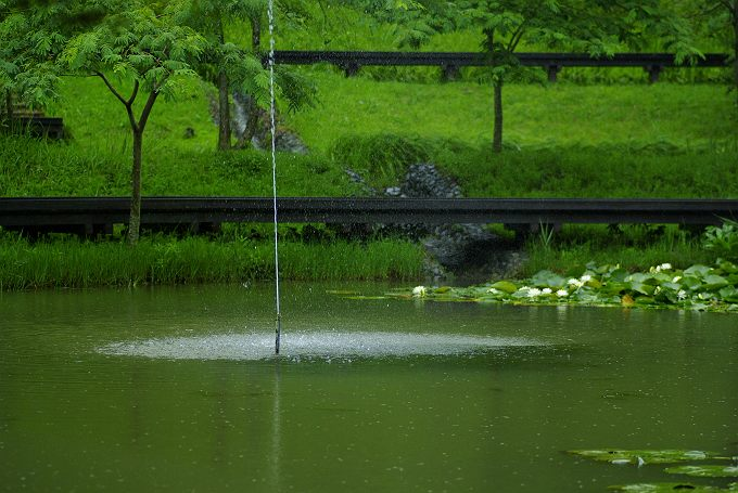 雨降るあらさわふる里公園にて