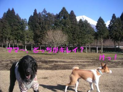 PICT01040300.jpg