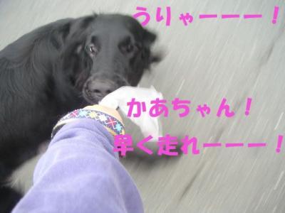PICT09300124.jpg