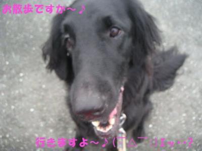 PICT09300127.jpg