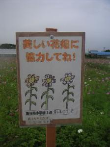 PICT10020110.jpg