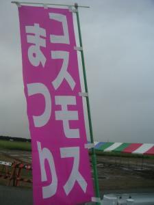 PICT10020111.jpg