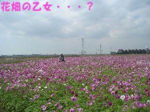 PICT10050164.jpg