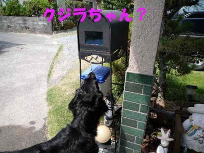 shii0809(1).jpg