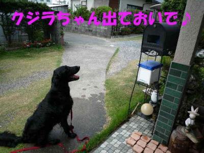 shii0809(3).jpg