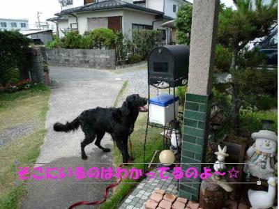 shii0809(4).jpg