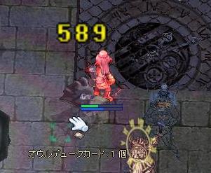 449.jpg