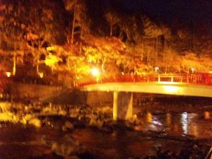 香嵐渓ライトアップ2