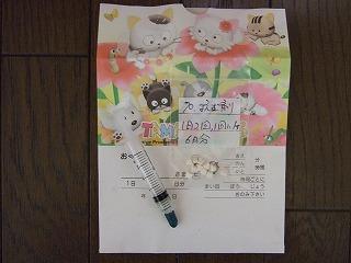 ss-2007_0808kuro0025.jpg