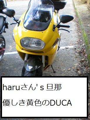 20091223-10.jpg