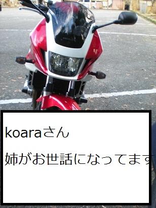 20091223-12.jpg