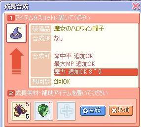 20071111093313.jpg