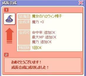 20071111093318.jpg