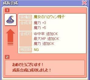 20071111093348.jpg