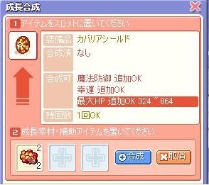 20071215100232.jpg