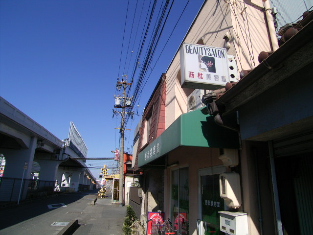 biwajima0529.jpg